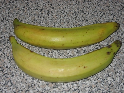 Unripe green plantains in the raw